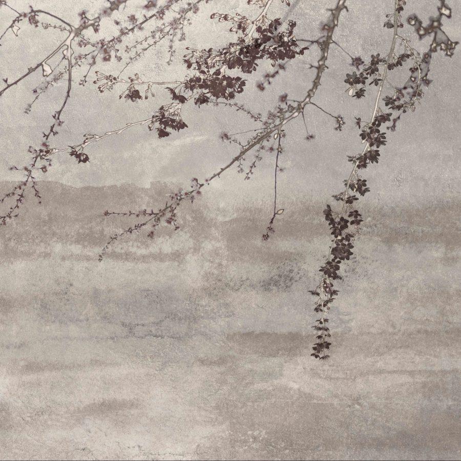 spirata alla grazia eterea dei ciliegi in fiore