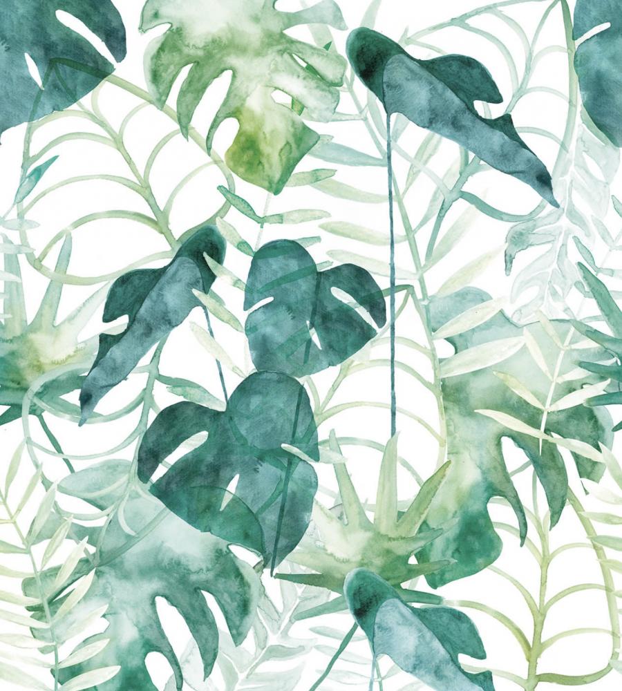 namua_wallpaper